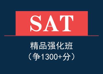 SAT精品强化班(争1350分)