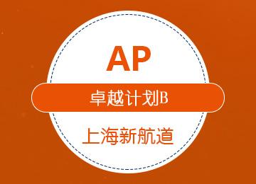 AP卓越计划(B套餐)