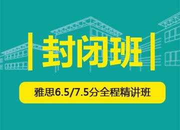 雅思6.5/7.5分全程精讲班